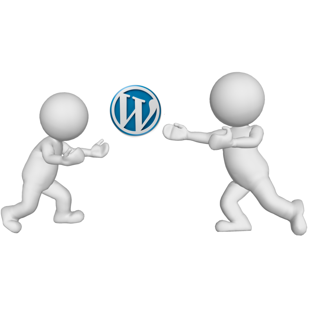 Play with WordPress